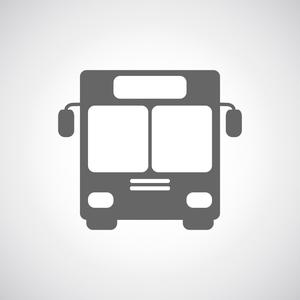 Bus 300